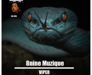8nine Muzique - Viper Mp3