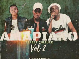 Entity MusiQ & Lil'Mo - Amapiano Street Culture Vol. 2 Mix
