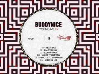 Buddynice - Tribute to TimAdeep (Redemial Mix)
