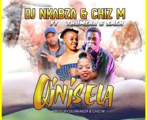 DJ Nkabza & Chiz M - Qinisela