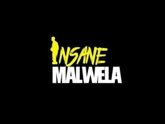 Insane Malwela & Cheestos - Demented Us