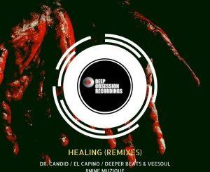 Buder Prince - Healing (Remixes)