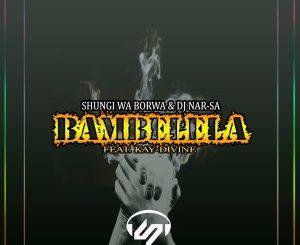 Shungi Wa Borwa & DJ Nar-SA - Bambe Mp3 Download