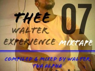 Thee Walter Experience 07 Mix