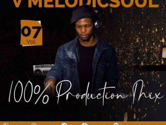 V Melodicsoul - 100% Production Mix Vol. 7