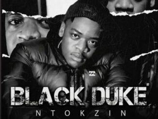 Ntokzin - Crying Monkey